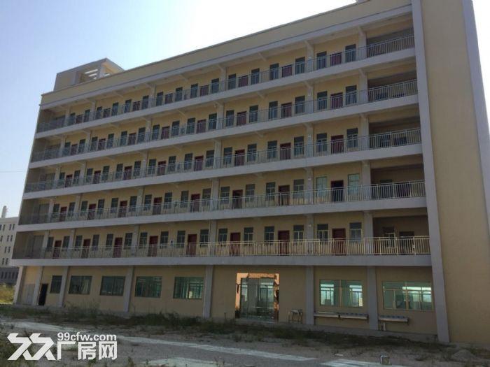 《靓》水口占地1万平米厂房出售-图(5)