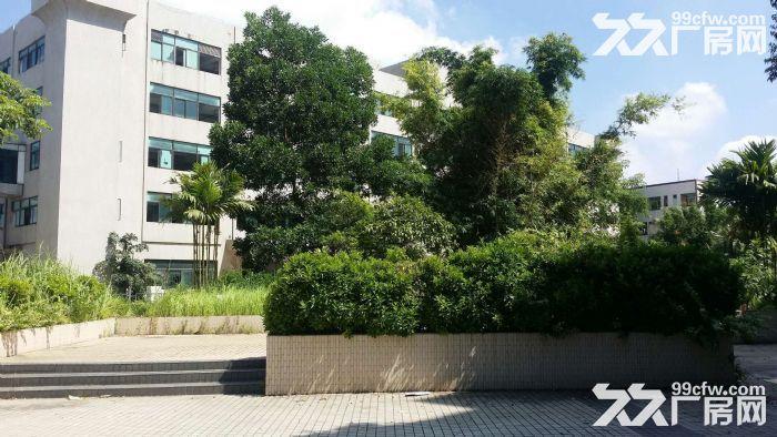 花园式独院14000平方现成装修空地超大-图(3)