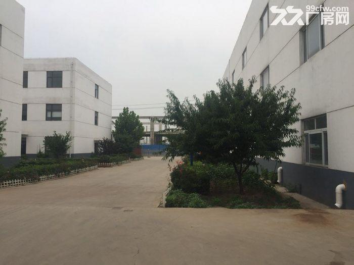出租津南咸水沽3744平米单层厂房可办环评-图(2)