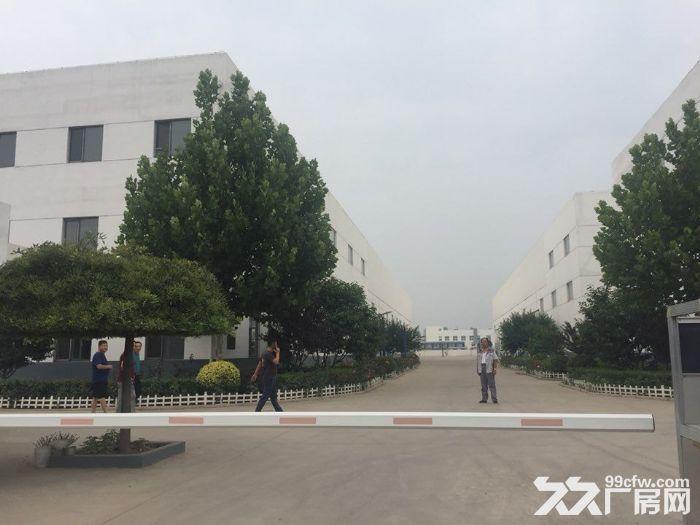出租津南咸水沽3744平米单层厂房可办环评-图(1)
