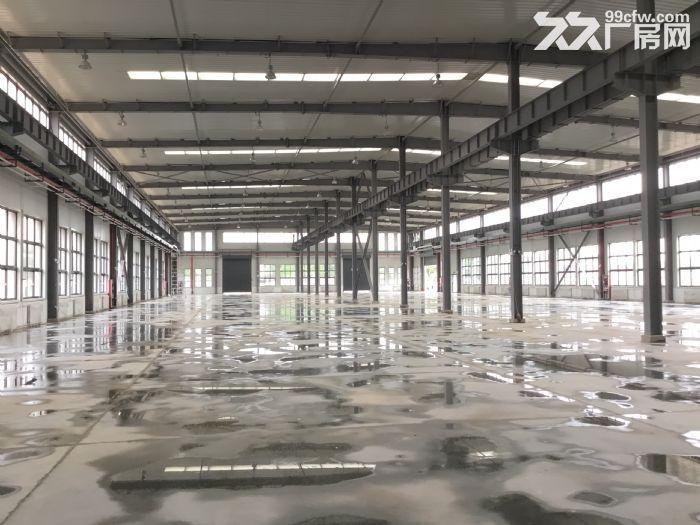 百万标准化厂房拎包入驻可租可售-图(5)