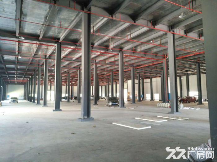 浏阳工业园区内标准钢结构厂房出租