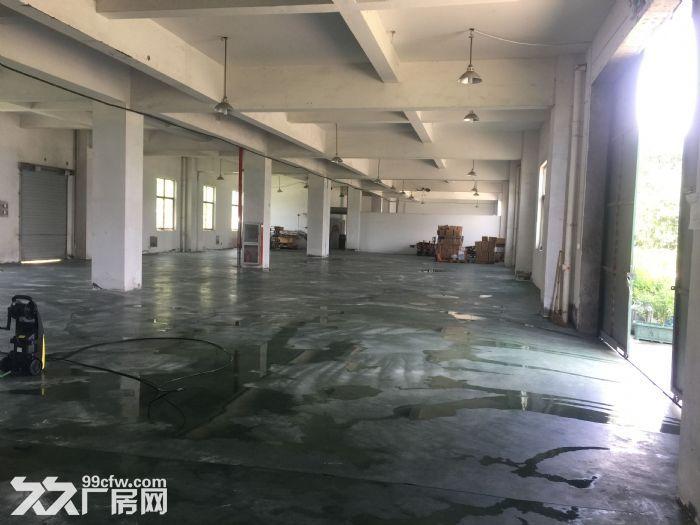 阳明资料一楼厂房仓库出租1200平方米-图(2)