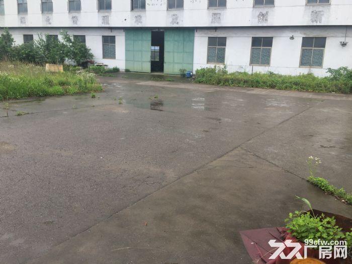 阳明资料一楼厂房仓库出租1200平方米-图(1)
