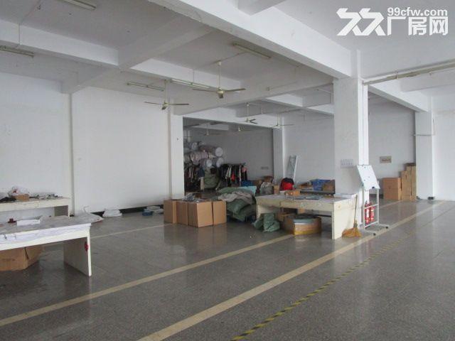 1500方厂房出租,适合淘宝电商-图(2)