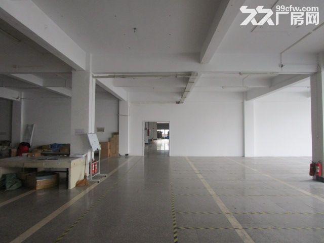 1100方厂房,手工组装、科技研发等科技型企业看过来-图(2)