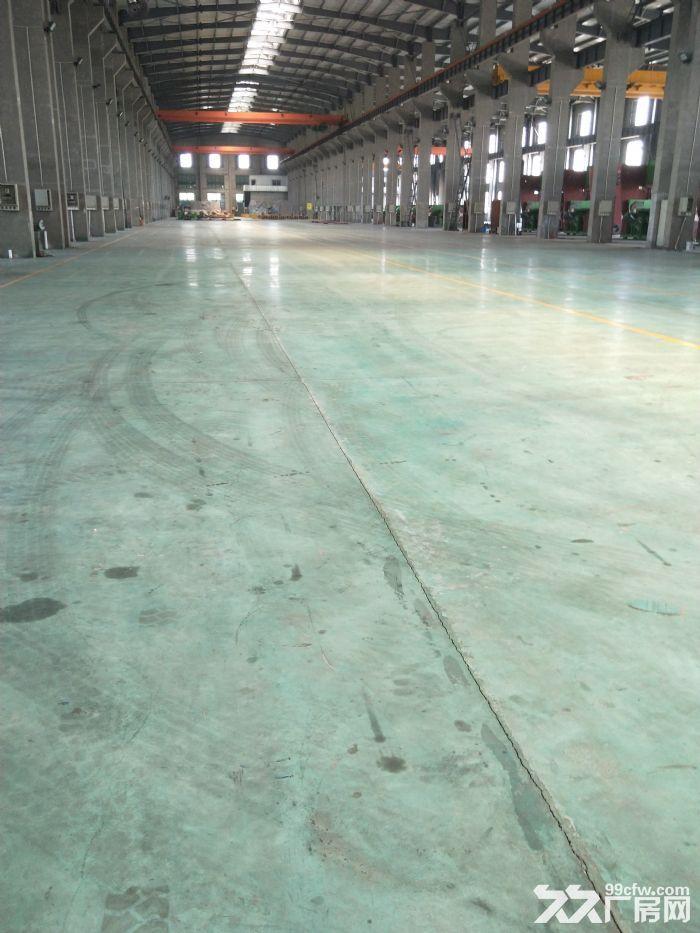 祝塘17500平独门独院新建机械厂房,用料很讲究-图(1)