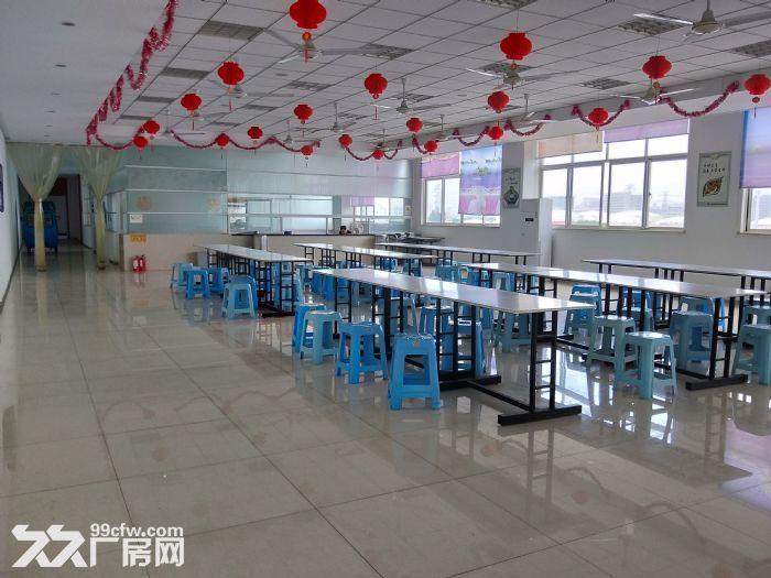 新区旺庄5000平独门独院机械厂房可分租,炒鸡豪华-图(7)