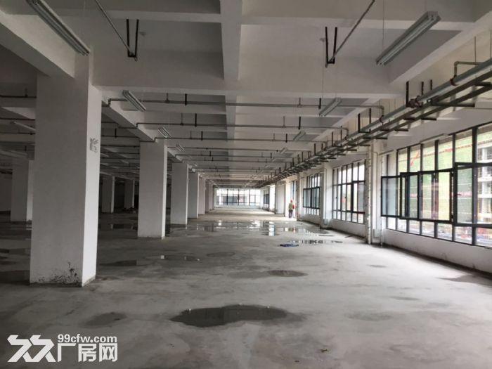 标准化厂房拎包入驻可租可售五十年产权-图(6)