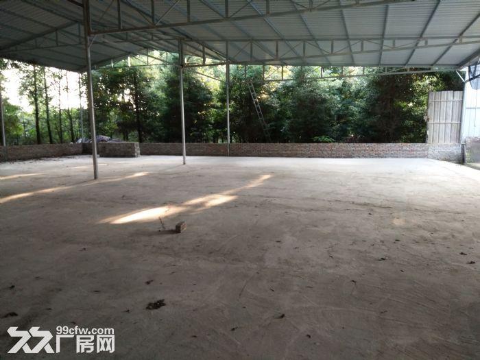 独栋标准钢结构厂房出售占地27亩-图(2)