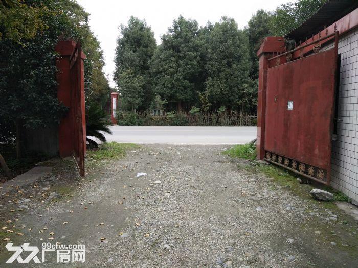 独栋标准钢结构厂房出售占地27亩-图(5)