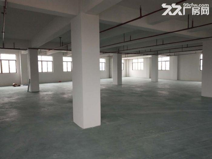 德来工业区1600方一楼出租可分租-图(1)