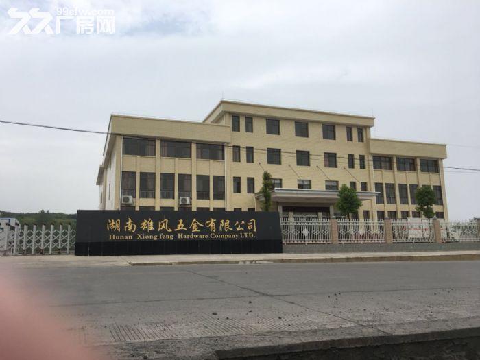 湖南雄风五金有限公司厂房出售公告-图(3)