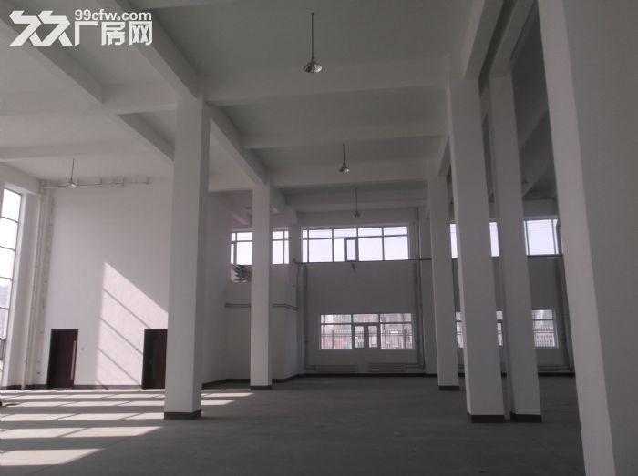企业独栋出租带办公住宿洗浴停车场小花园1888平米-图(3)