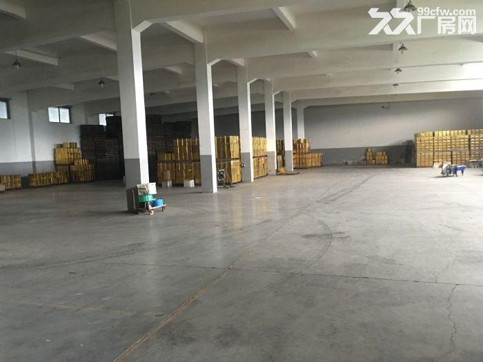 龙观乡占地40亩左右厂房8栋多框架砖混钢结构都有看厂看地方便-图(3)