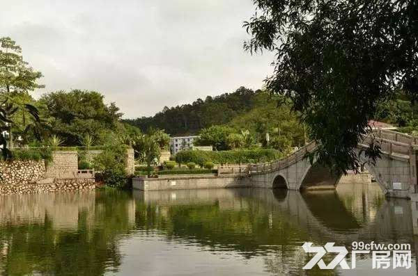 珠海大桥西灯笼路口400平河边住宅用地仅350万可办证-图(5)