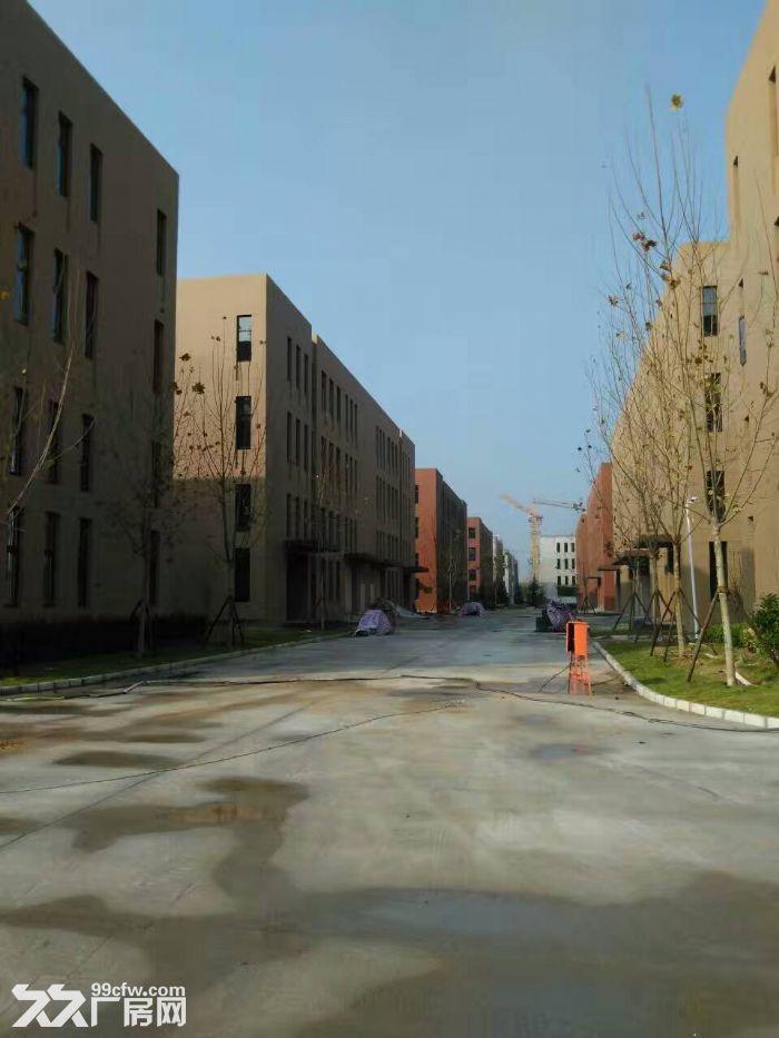 青岛红岛标准厂房出售多面积可选双证大产权可按揭-图(2)