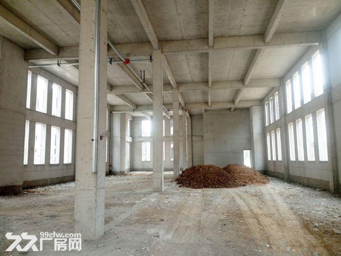 青岛红岛标准厂房出售多面积可选双证大产权可按揭-图(3)