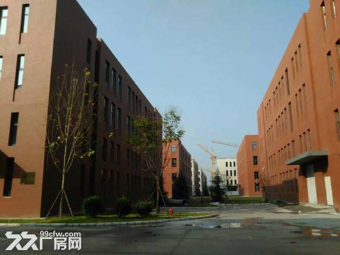 青岛红岛标准厂房出售多面积可选双证大产权可按揭-图(5)