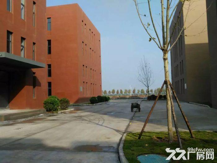 青岛红岛标准厂房出售多面积可选双证大产权可按揭-图(6)