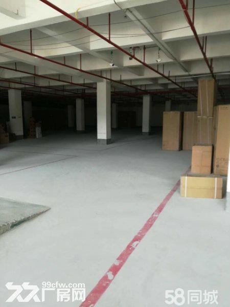 回兴园区一楼2000平仓库出租面积可分-图(1)