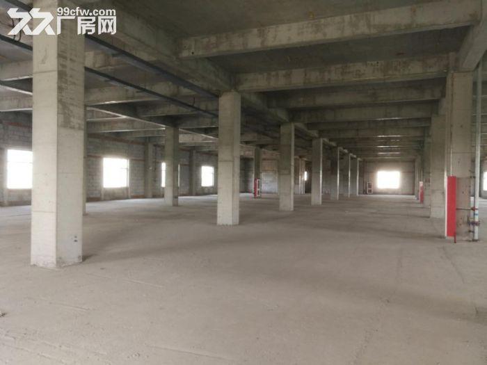 津南八里台5300平米独栋厂房出租手续齐全可办环评-图(3)