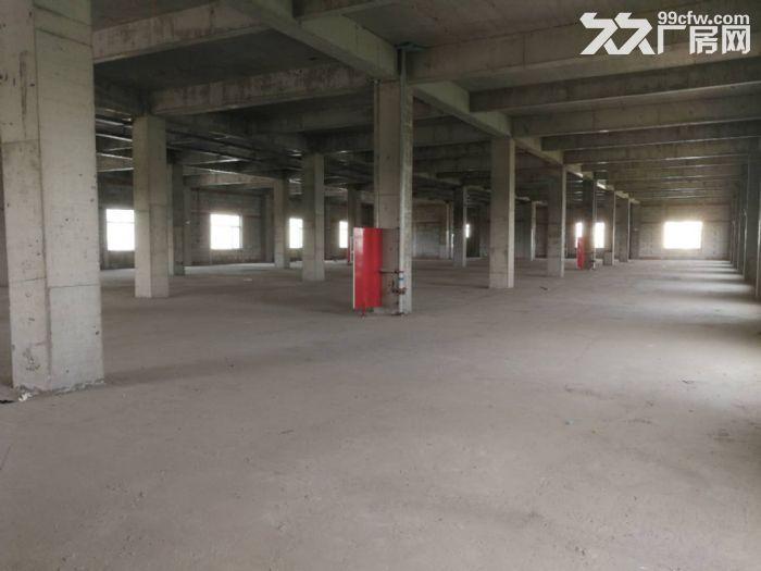 津南八里台5300平米独栋厂房出租手续齐全可办环评-图(2)