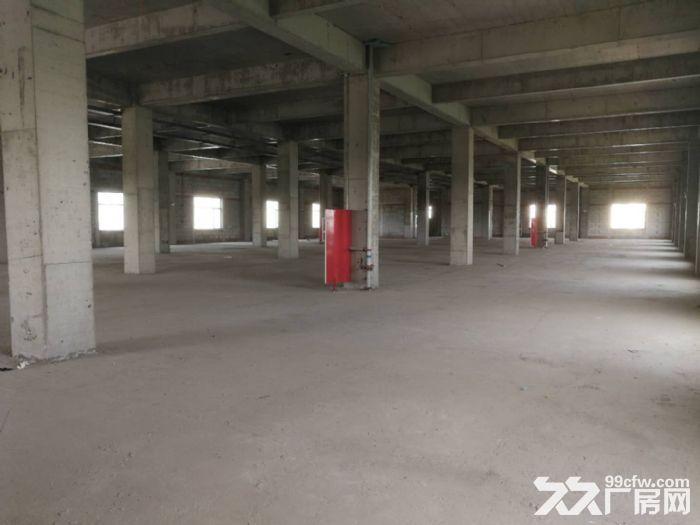出租!津南八里台三层独栋厂房面积5377平米可办环评-图(2)