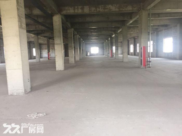 出租!津南八里台三层独栋厂房面积5377平米可办环评-图(4)