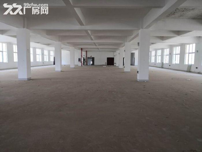 武汉市江岸区三环内8000平米厂房出租丨四环边上-图(3)