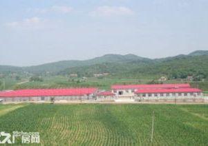 大型养殖场出兑可转型经营