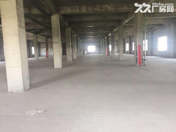 出租津南八里台5400平米独栋厂房独门独院手续齐全-图(5)