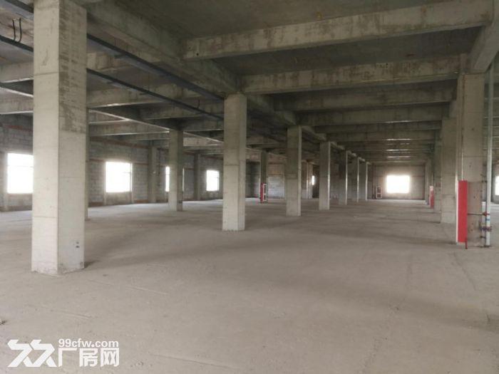 出租津南八里台5300平米独栋厂房租金便宜手续齐全-图(3)