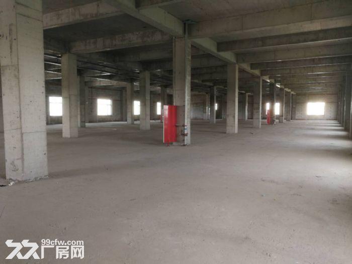 出租津南八里台5300平米独栋厂房租金便宜手续齐全-图(2)