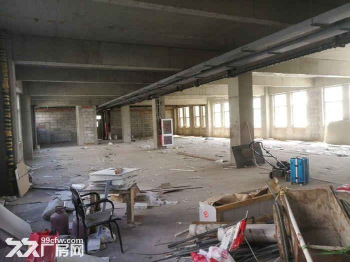 出租津南八里台5300平米独栋厂房租金便宜手续齐全-图(4)