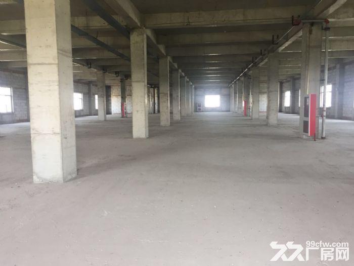 出租津南八里台5300平米独栋厂房租金便宜手续齐全-图(6)