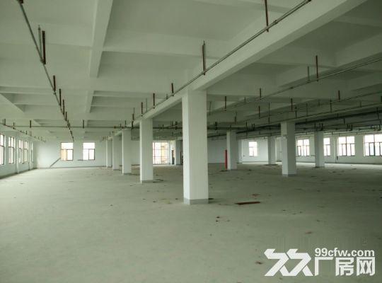 政府项目产业园总占地-图(7)