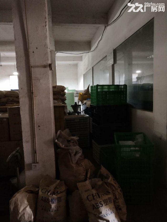 殿前6组航线下工业区500平1楼标准厂房出租-图(7)
