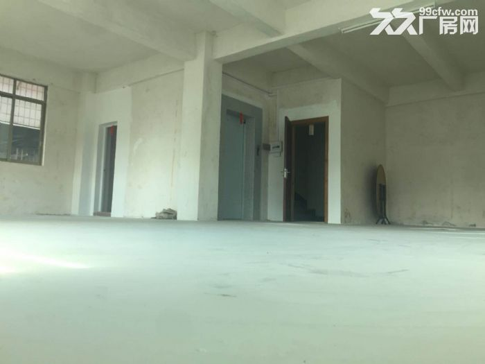 绿榕路住宅用地自建房出租-图(3)