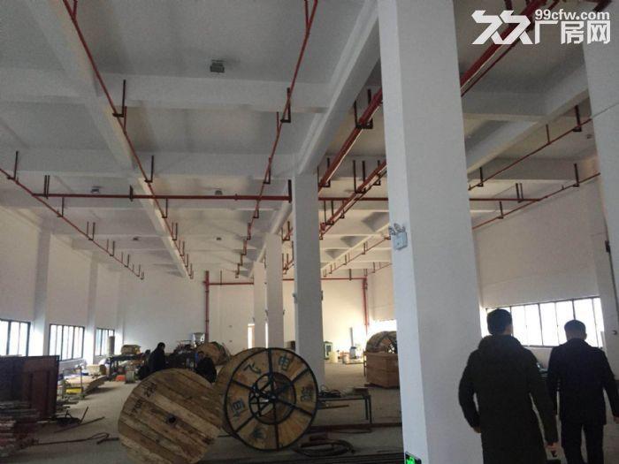 梅溪湖步步高附近仓储、厂房出租-图(3)