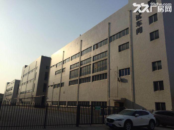 梅溪湖步步高附近仓储、厂房出租-图(1)