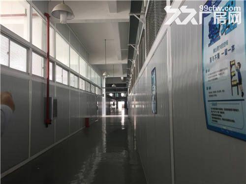 武汉市江岸区三环内2000平米厂房出租丨科技研发-图(7)