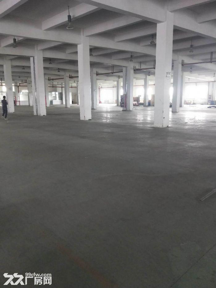 无中介费高新区科技城可环评仓储独栋双层高标准厂房先到先得,可分割-图(2)
