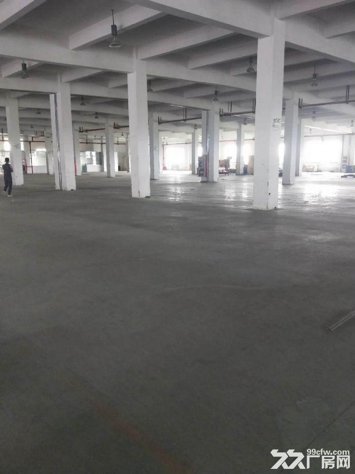 无中介费高新区科技城可环评仓储独栋双层高标准厂房先到先得,可分割-图(4)