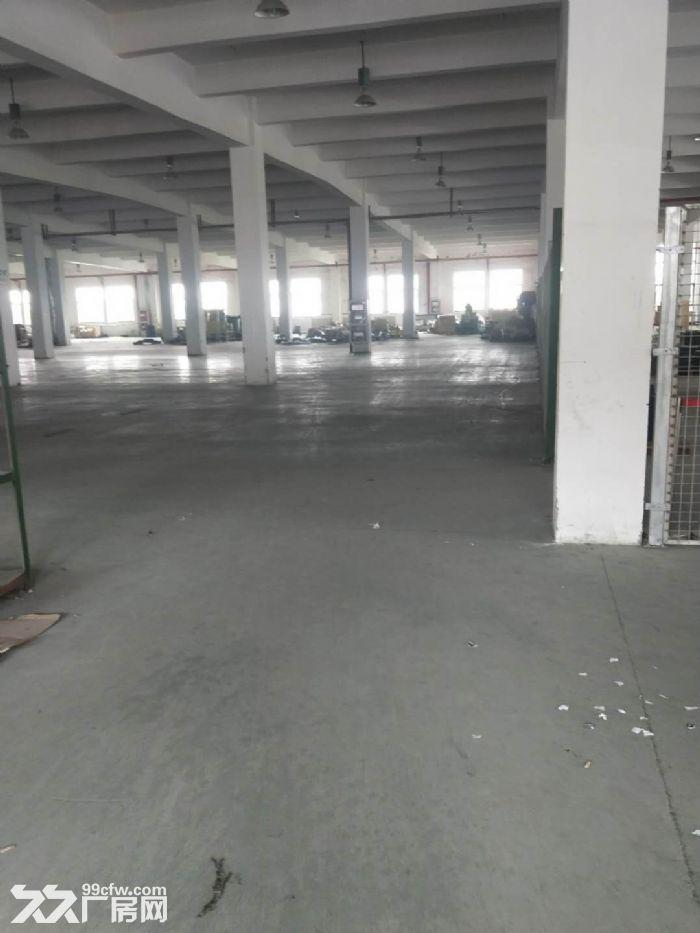无中介费高新区科技城可环评仓储独栋双层高标准厂房先到先得,可分割-图(7)