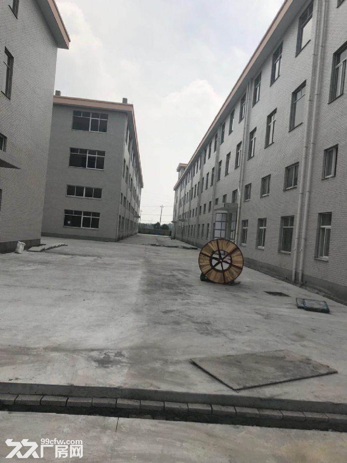 好地段,新建的厂房仓库,不担心拆迁,只要五毛钱一平-图(2)