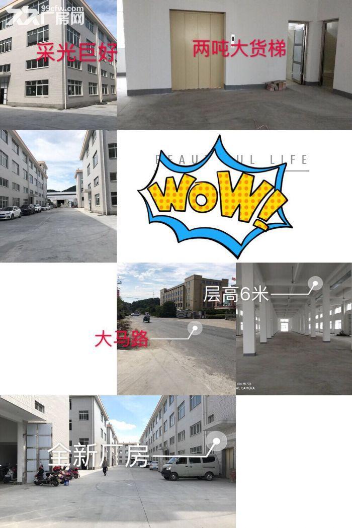 好地段,新建的厂房仓库,不担心拆迁,只要五毛钱一平-图(1)