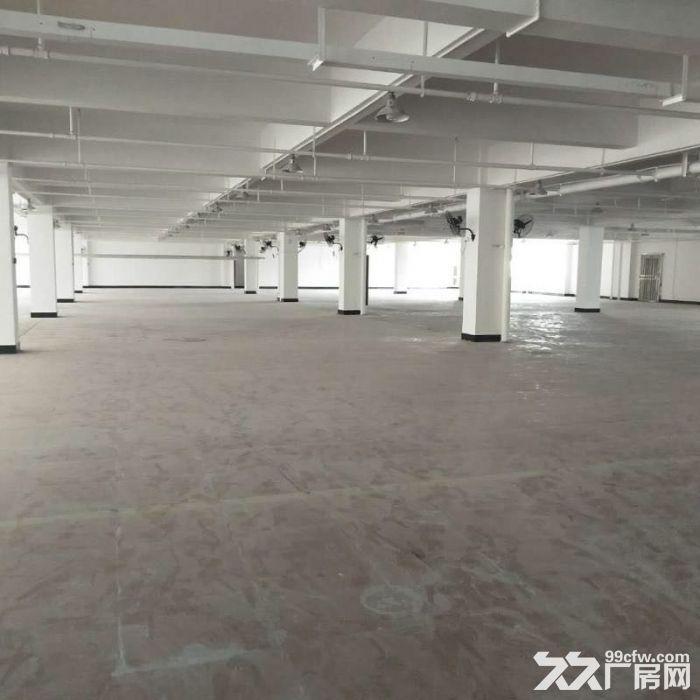 好地段,新建的厂房仓库,不担心拆迁,只要五毛钱一平-图(5)