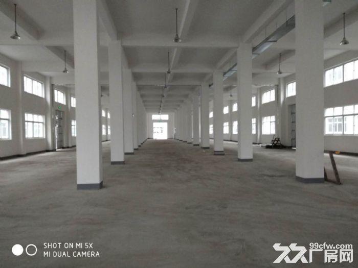义桥新建的全新厂房,彩光好,价格便宜,可拎包入驻-图(1)