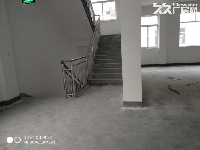 义桥新建的全新厂房,彩光好,价格便宜,可拎包入驻-图(4)
